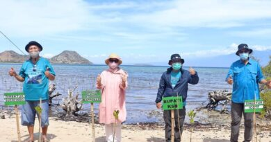 Lestarikan Lingkungan Perairan Gili Balu Sumbawa Barat, ICCTF dan Bappenas RI Tanam Mangrove
